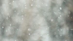 冬の季節にどろあわわ洗顔